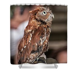 Are You My Mother Shower Curtain by John Haldane