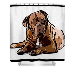 Are You Talking To Me Shower Curtain by Omaste Witkowski