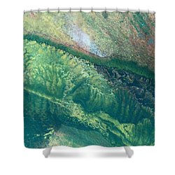 Ariel View Of Venus Shower Curtain by James Welch