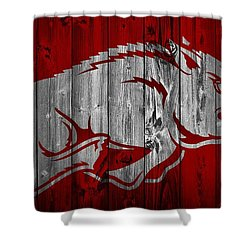 Arkansas Razorbacks Barn Door Shower Curtain by Dan Sproul