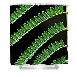 Artsy Green Shower Curtain by Sabrina L Ryan