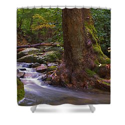 As The River Runs Shower Curtain by Karol Livote