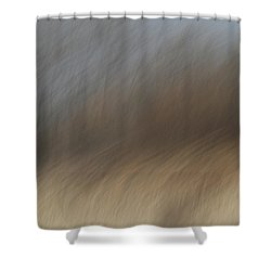 As The Wind Blows Shower Curtain by Karol Livote