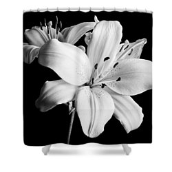 Asian Lilies 1 Shower Curtain by Sebastian Musial