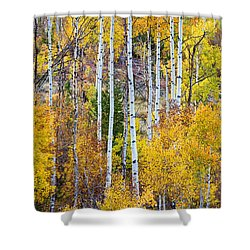 Aspen Tree Magic Shower Curtain by James BO  Insogna