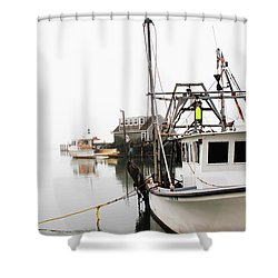 At Dock Shower Curtain by Karol Livote