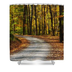 Autumn Beauty Shower Curtain by Dale Kincaid