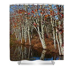 Autumn Blue Shower Curtain by Karol Livote