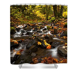 Autumn Breeze Shower Curtain by Mike  Dawson