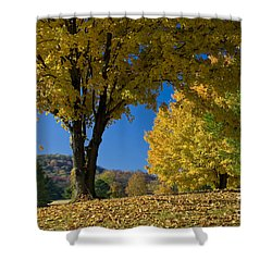 Autumn Colors Shower Curtain by Brian Jannsen