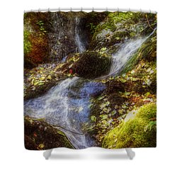 Autumn Falls Shower Curtain by Melanie Lankford Photography