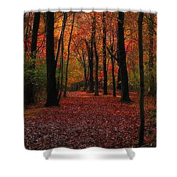 Autumn IIi Shower Curtain by Raymond Salani III