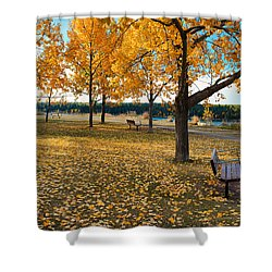 Autumn In Calgary Shower Curtain by Trever Miller