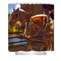 Autumn In Sturbridge Shower Curtain by Joann Vitali