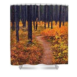 Autumn In Yellowstone Shower Curtain by Raymond Salani III