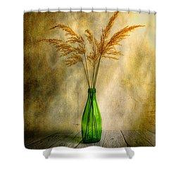 Autumn Mood Shower Curtain by Veikko Suikkanen