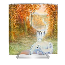 Autumn Morning Shower Curtain by Andrew Farley