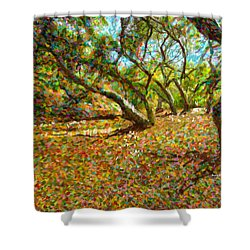 Autumn Oak Forest Shower Curtain by Angela A Stanton