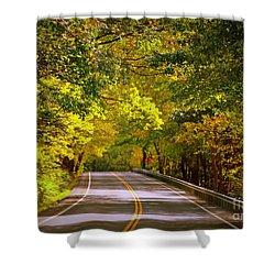 Autumn Road Shower Curtain by Carol Groenen