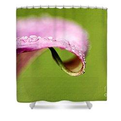 Autumn Tears Shower Curtain by Darren Fisher