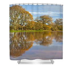 Autumn Trees Shower Curtain by Sebastian Wasek