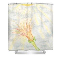 Awakening Shower Curtain by Kim Sy Ok