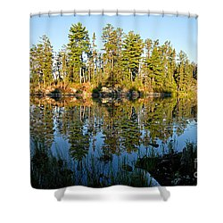 Awesub Morning Shower Curtain by Larry Ricker