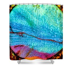 Azure Sunset Shower Curtain by Tom Phillips
