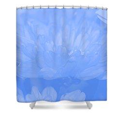 Baby Blue 1 Shower Curtain by Carol Lynch