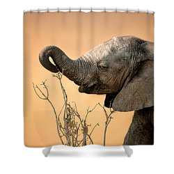 Baby Elephant Reaching For Branch Shower Curtain by Johan Swanepoel