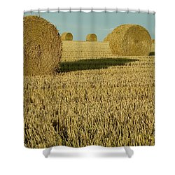 Bales Of Grain At Harvest Time Shower Curtain by Cyril Ruoso