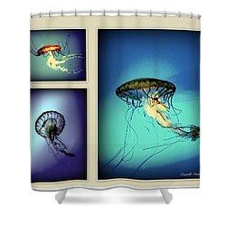 Baltimore Belles Shower Curtain by Danielle  Parent