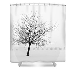 Bare Tree In Winter - Wonderful Black And White Snow Scenery Shower Curtain by Matthias Hauser
