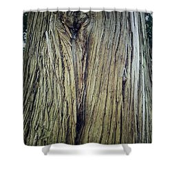 Bark Shower Curtain by Les Cunliffe