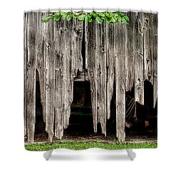 Barn Boards - Rustic Decor Shower Curtain by Gary Heller