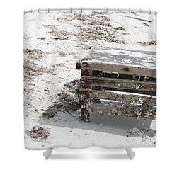 Barnacles On The Beach Shower Curtain by Georgia Fowler