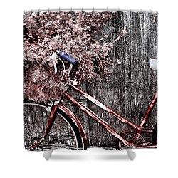 Basket Full Shower Curtain by Mark Kiver