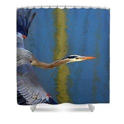 Bay Blue Heron Flight Shower Curtain by Robert Bynum