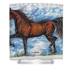 Bay Horse Running Shower Curtain by Angel  Tarantella