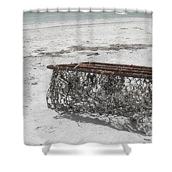 Beach Finds Shower Curtain by Georgia Fowler