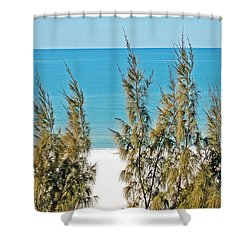 Beach Front View Shower Curtain by Aimee L Maher Photography and Art Visit ALMGallerydotcom