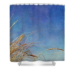 Beach Grass In The Wind Shower Curtain by Michelle Calkins