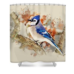 Beautiful Blue Jay - Watercolor Art Shower Curtain by Christina Rollo