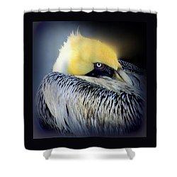 Beautiful Dreamer Shower Curtain by Karen Wiles