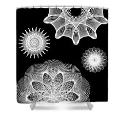 Beautiful Geometry Bw Shower Curtain by Angelina Vick