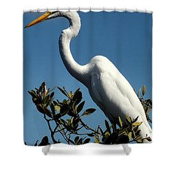 Beauty Of Sanibel Shower Curtain by Karen Wiles