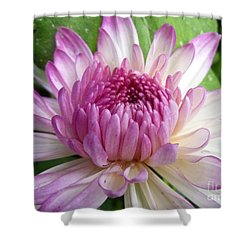 Beauty With Double Identity Shower Curtain by Lingfai Leung