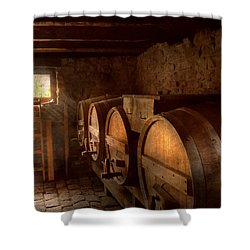 Beer Maker - The Brewmasters Basement Shower Curtain by Mike Savad
