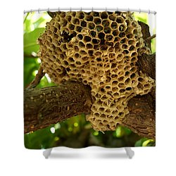 Bees In The Peach Tree Shower Curtain by Kerri Mortenson