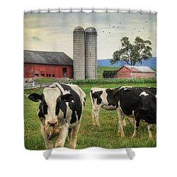 Belleville Amish Farm Shower Curtain by Lori Deiter
